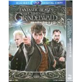 怪獸與葛林戴華德的罪行 Fantastic Beasts: The Crimes of Grindelwald (2018) DVD