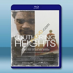 咆哮山莊 Wuthering Heights 【2011】 藍光25G
